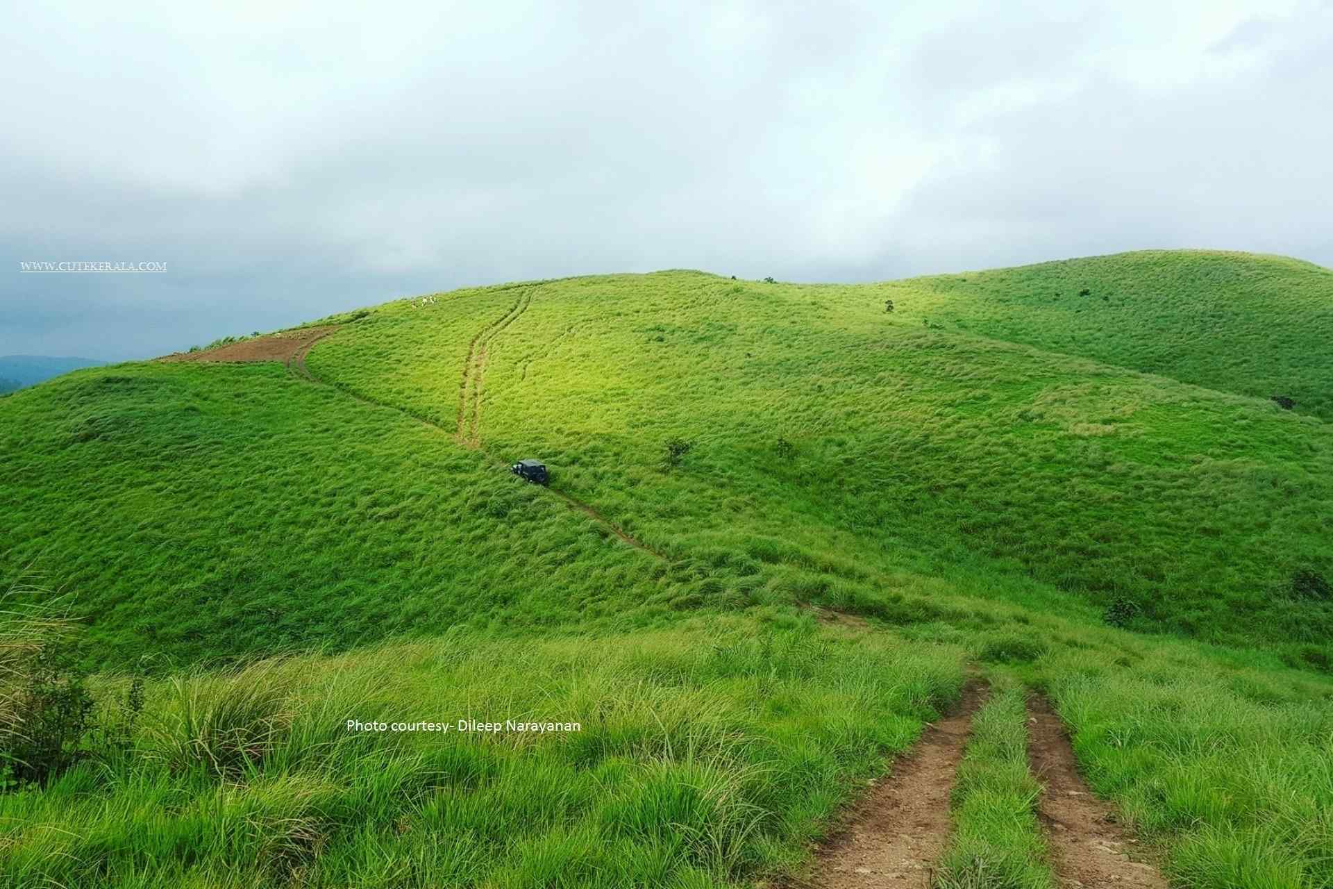 Vagamon Meadows- Mottakunnu